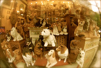 Windowfull of plaster dogs...